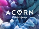 Acorn Digital Agency
